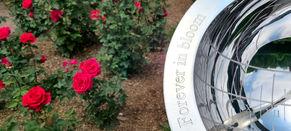 Rose Garden at Brookeside Gardens