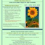S208 Platform Etiquette June 19 2021 pdf