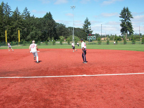 2010 Sweet artificial turf infield.jpg