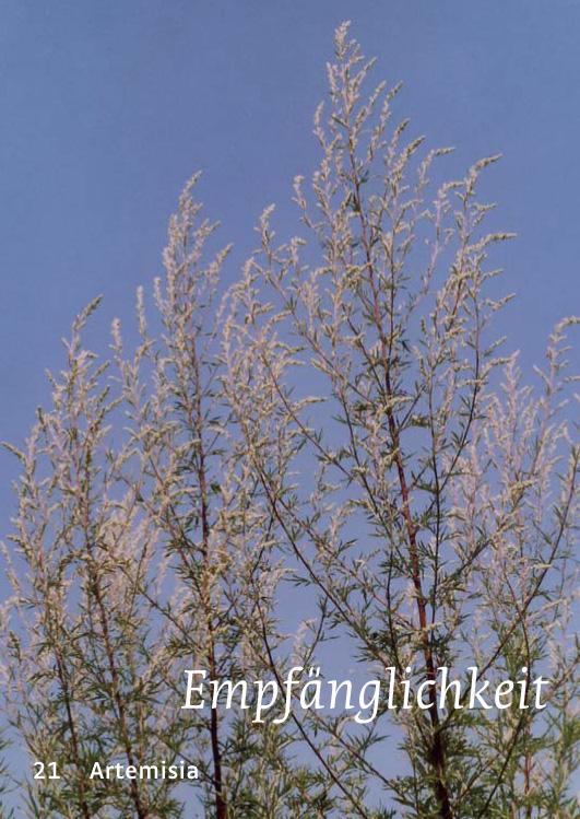 21 Artemisia - Empfänglichkeit