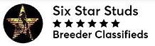 6 Star Studs n Stallions