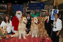 Meet the Breed Golden Booth 2012 First P