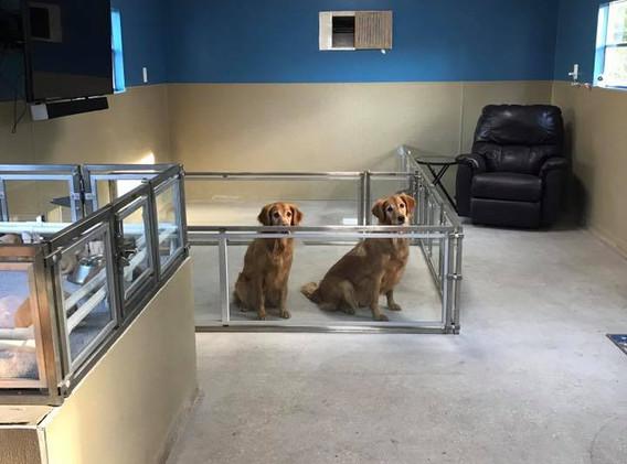Indoor kennels
