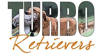 TURBO-logo 4x2.jpg