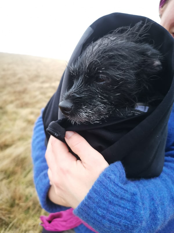 Cold poochie.