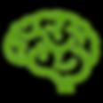 Brain_light green_5a9a0e.png