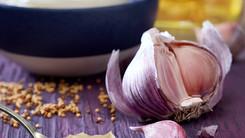 Torchyn Mayo Garlic
