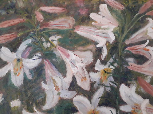 SALE- ORIGINAL OIL- White lily flowers- board painting