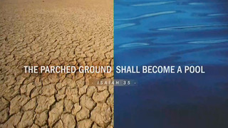 The Parched Ground Shall Become A Pool