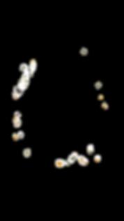AF478E3E-7901-4C8D-ABC7-E2B517C10568_edi