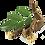 Thumbnail: Licorice Root Tincture