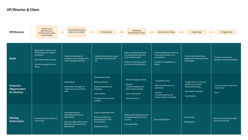 VP/Director@Client Flow Map