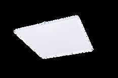WEB - Icarus Prisma - 50W primatic 600x6