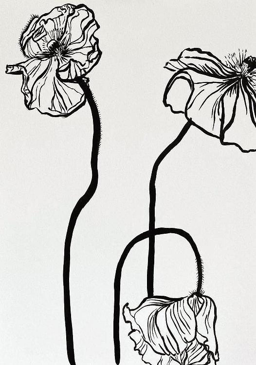 Lucy Wayne, 3 poppies