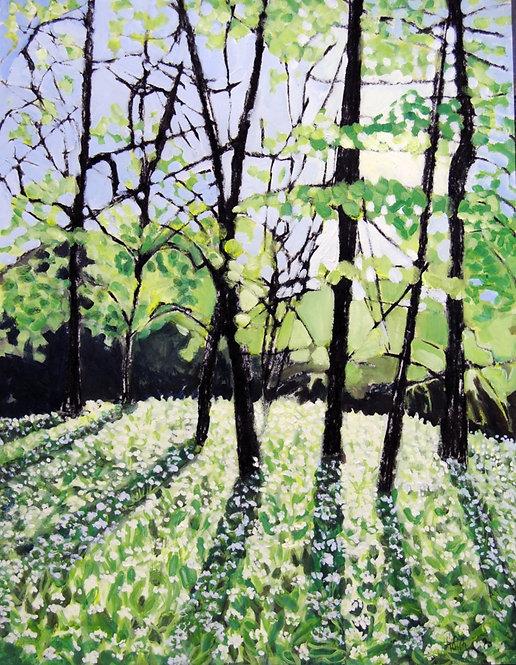 Lizbeth Holstein, Early Spring