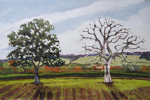 Lizbeth Holstein, Two trees