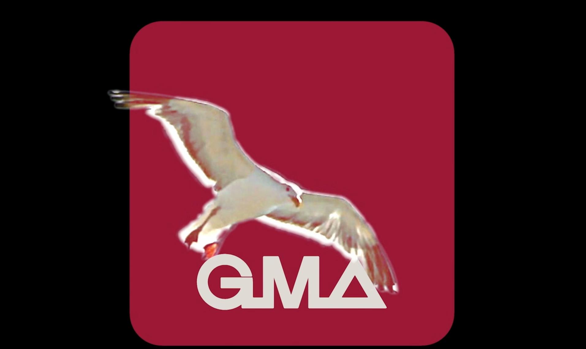 GMA GROUP