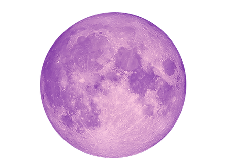 moon_edited_edited.png