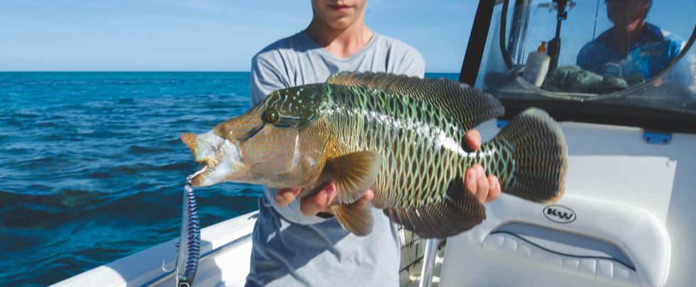 Flats Fishing - FNQ