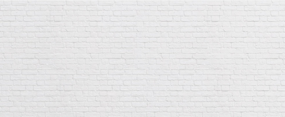 Brick Background 1365 x 563 x 96.jpg