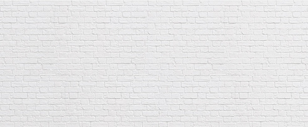 Brick Background 1365 x 563 x 96.jpg