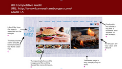 Competitive Audit
