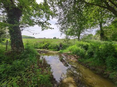Relevé zone maraîchère pour un BE environnement.