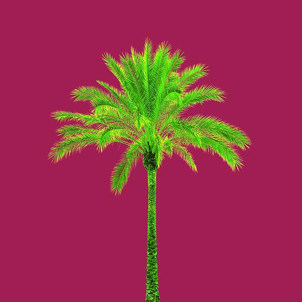 Pernille_Westh_Tree_no1.jpg