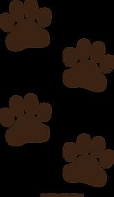 brown-paw-prints.png