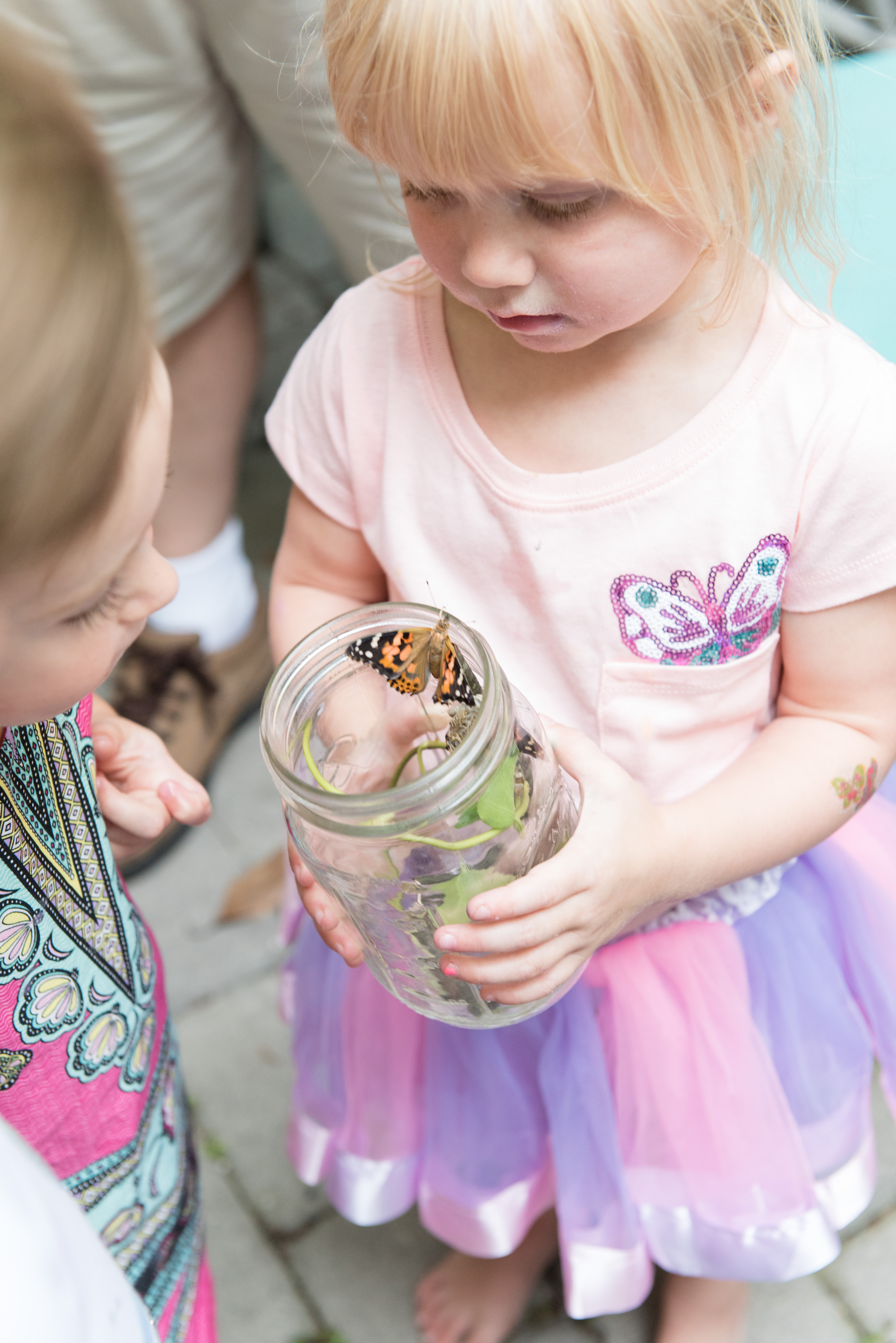 Butterfly Garden Party