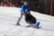 bi skiing.png