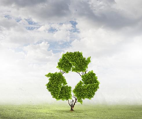 environmentally friendly .png