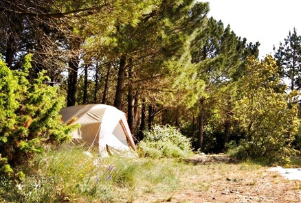Camping on our land