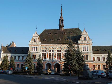 Consiliul Județean Hunedoara se întrunește astăzi, 28 iunie, ora 13.00, în ședință ordinară