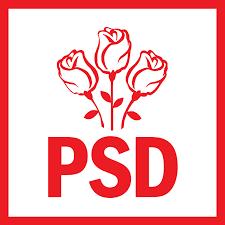 PSD a avut dreptate, iar Raportul Curții de Conturi a confirmat