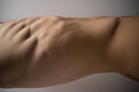 "Rodrigo Reinoso - Body Part - ""Torso"""