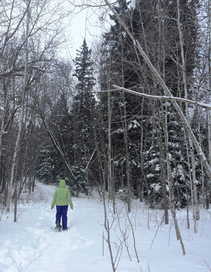 snowshoeing in clear lake