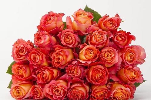 Imported Rose Bundles