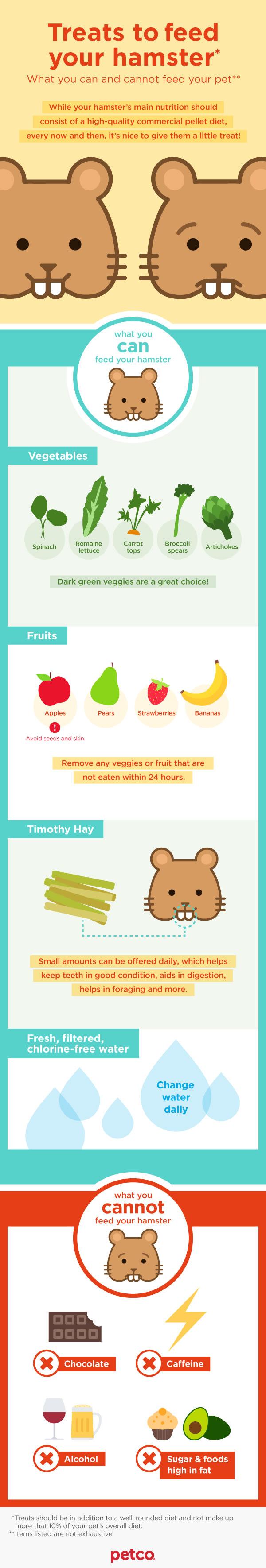 HamsterTreat-Infographic.jpg