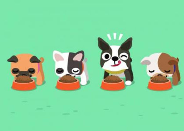 dogs-eating_0.jpg