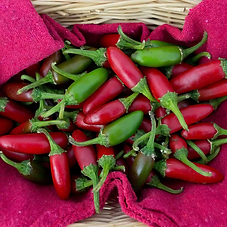 red-green-jalepe-o-peppers-123363679-58a