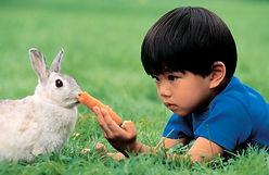 boy-carrot-pet-rabbit.jpg