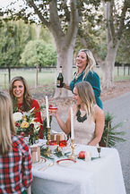 christmas photo shoot,bachelorette party,christmas themed wedding,christmas outdoors party,christmas table setup,christmas centerpiece,wedding cake,christmas party cocktails,christmas decor,christmas party outfit inspiration,christmas celebration