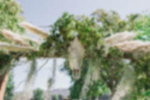 Orianna and Patrick Wedding-240.jpg