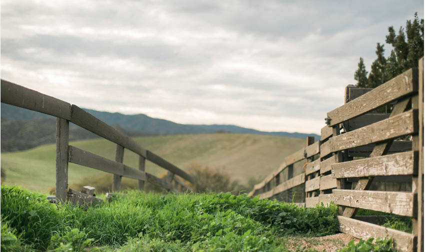Anna-J-Photography-_-Deerhurst-Ranch6.pn