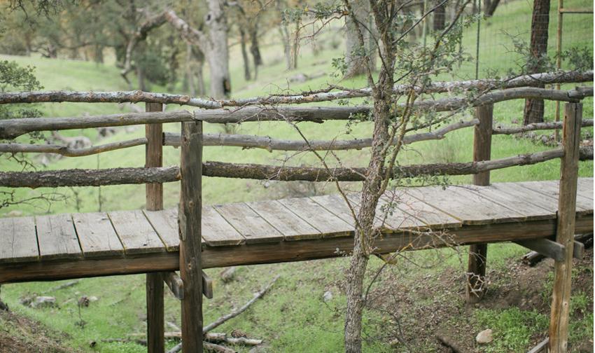 Anna-J-Photography-_-Deerhurst-Ranch13.p