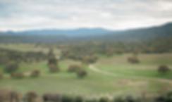 Anna-J-Photography-_-Deerhurst-Ranch15.p