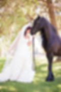 wedding on a ranch,wedding photo shoot,wedding centerpiece,wedding reception,wedding table setup,wedding red and gold theme,wedding red roses,wedding equestrian theme,wedding horse shoe accents,wedding dress,wedding outside,wedding cake,wedding hair
