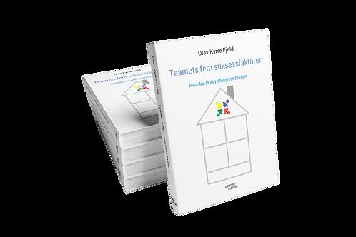 Teamets fem suksessfaktorer - Hvordan få et velfungerende team