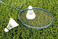 TSV Finning Badminton
